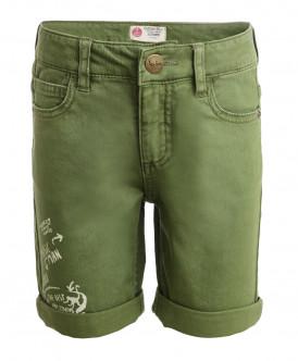 Зеленые шорты из твила