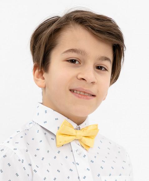 Желтый галстук-бабочка